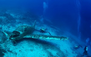 WRECKDIVING_PIPER_01