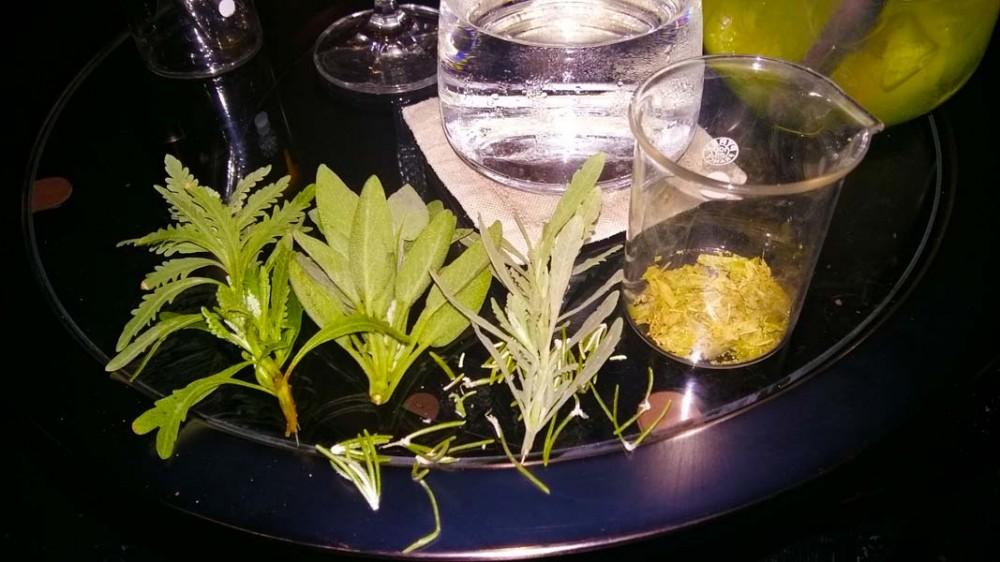 Herbs tasting experience!