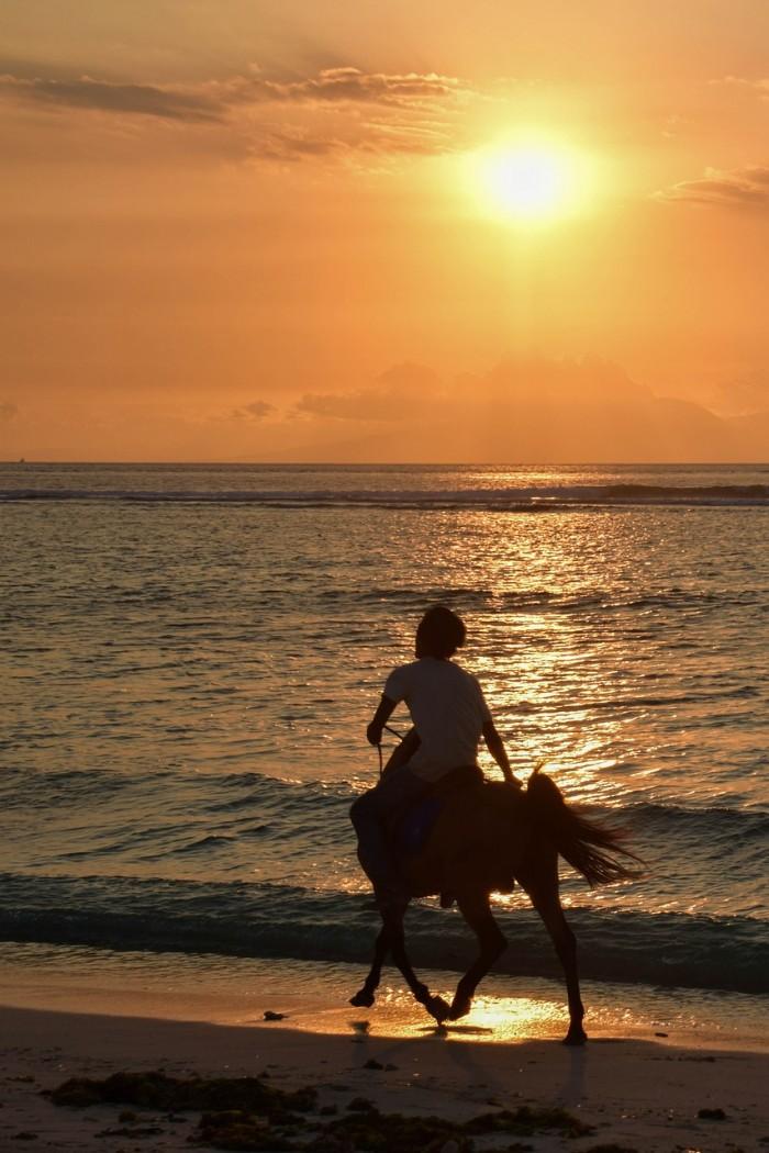santorini horse riding
