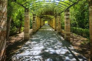 the-national-garden-of-athens-near-syntagma