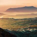 Assyrtiko: The Santorini Cultivar