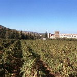 Wine Tourism in Peloponnese: Achaia