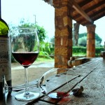 Wine Tourism in Peloponnese: Ilia
