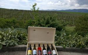 pella goumenissa wine
