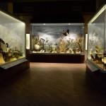 Mushroom Museum & Natural History Museum of Meteora