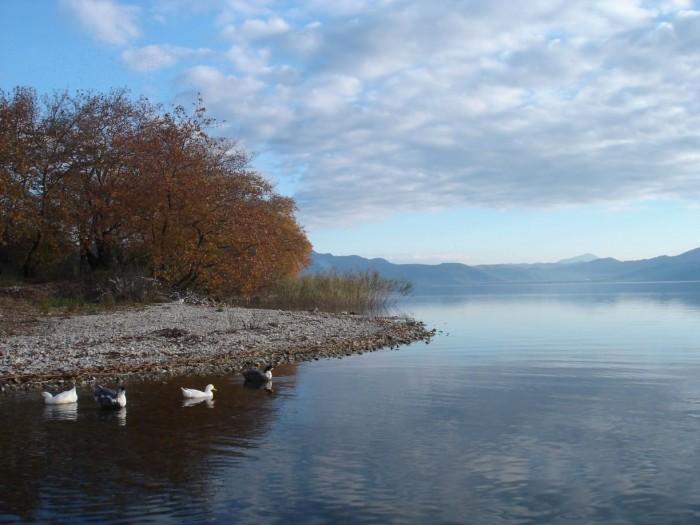 trichonida lake