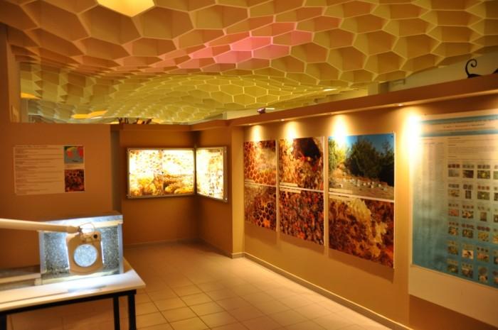 bee museum in rhodes